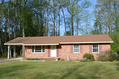 Goldsboro Single Family Home For Sale: 961 N Nc Hwy 581