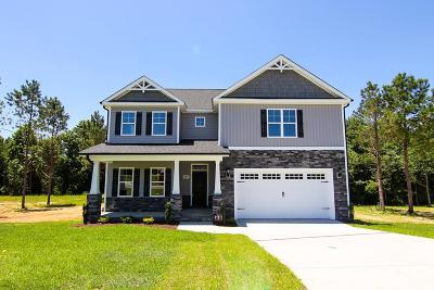 Pikeville Single Family Home For Sale: 217 Planters Ridge Drive