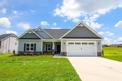 Pikeville Single Family Home For Sale: 230 Planters Ridge Drive