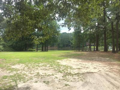 Wayne County Residential Lots & Land For Sale: 100 Wackena Point Rd