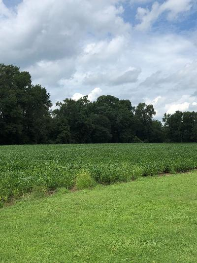 Goldsboro Residential Lots & Land For Sale: 639 E New Hope Rd