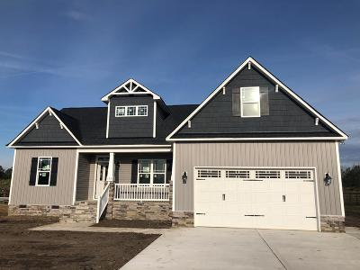 Johnston County Single Family Home For Sale: 123 Silver Tee