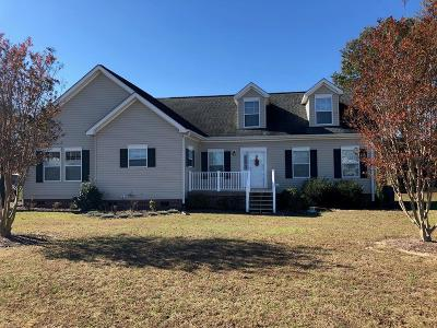 Goldsboro Single Family Home For Sale: 1884 S Us 13 Highway