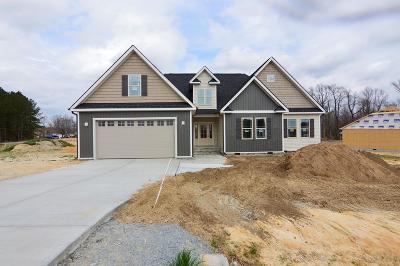 Johnston County Single Family Home For Sale: 27 Gatlin Drive