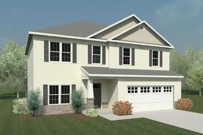 Wayne County Single Family Home For Sale: 205 Plainfield