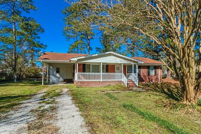 Goldsboro Single Family Home For Sale: 305 Woodview Drive