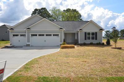 Goldsboro Single Family Home For Sale: 160 Princess Drive