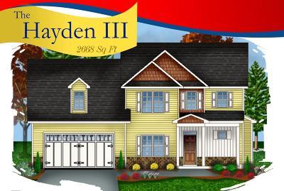 Goldsboro Single Family Home For Sale: 113 Pinehurst Lane