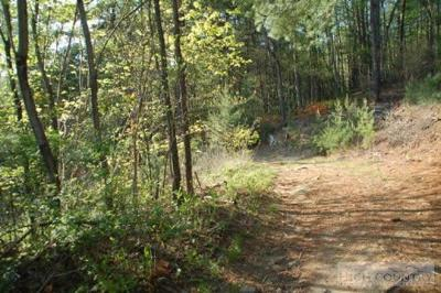 Caldwell County Residential Lots & Land For Sale: Tbd Highway 268