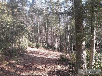Avery County, Watauga County Residential Lots & Land For Sale: Lot 35 Chilhowee Camp Lane