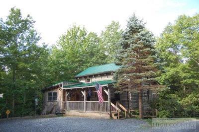 Avery County Single Family Home For Sale: 181 Oak Lane
