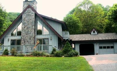 Ashe County Single Family Home For Sale: 390 Roten Drive