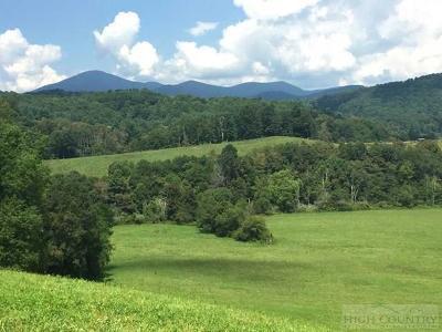 Watauga County Residential Lots & Land For Sale: 1241 Roby Greene Road