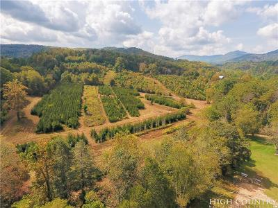 Avery County, Watauga County Residential Lots & Land For Sale: 350 Boone Fork Road