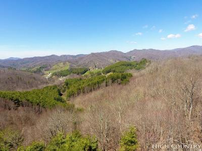 Avery County, Watauga County Residential Lots & Land For Sale: Tbd Highway 321