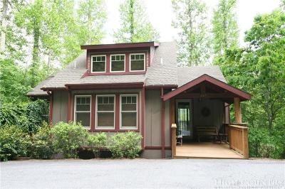 Alexander County, Ashe County, Avery County, Burke County, Caldwell County, Watauga County Single Family Home For Sale: 667 Echota Parkway Parkway