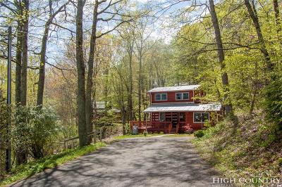 Alexander County, Caldwell County, Ashe County, Avery County, Watauga County, Burke County Single Family Home For Sale: 362 Frontier Drive