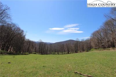Alexander County, Burke County, Caldwell County, Ashe County, Avery County, Watauga County Residential Lots & Land For Sale: Tbd Howards Creek Road