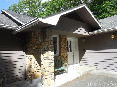 Watauga County Single Family Home For Sale: 193 Basswood Road