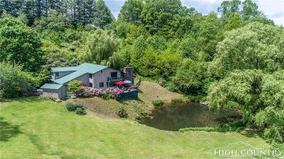 Ashe County Single Family Home For Sale: 344 Cherry Tree Lane