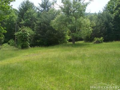 Ashe County Residential Lots & Land For Sale: Tbd Laurel Fork Rd