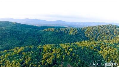 Alexander County, Burke County, Caldwell County, Ashe County, Avery County, Watauga County Residential Lots & Land For Sale: Off Tom Dula Road