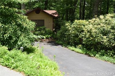 Alexander County, Caldwell County, Ashe County, Avery County, Watauga County, Burke County Single Family Home For Sale: 86 Rocky Meadows Roads