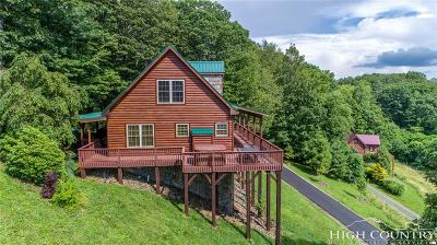 Avery County Single Family Home For Sale: 1015 Appletree Drive