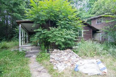 Caldwell County, Alexander County, Watauga County, Ashe County, Avery County, Burke County Single Family Home For Sale: 721 Big Branch Road