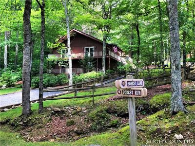 Sugar Mountain Single Family Home For Sale: 131 Forest Lane