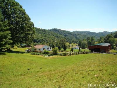 Alexander County, Ashe County, Avery County, Burke County, Caldwell County, Watauga County Single Family Home For Sale: 1284 Forest Grove Road