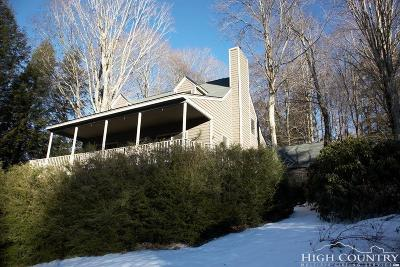 Avery County Single Family Home For Sale: 17 Woods Lane