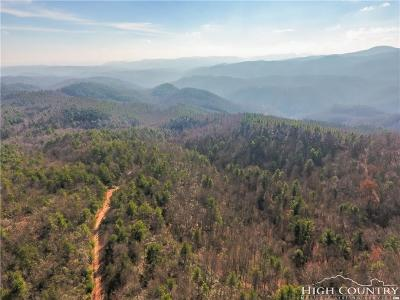 Alexander County, Burke County, Caldwell County, Ashe County, Avery County, Watauga County Residential Lots & Land For Sale: Tbd Wildcat Road
