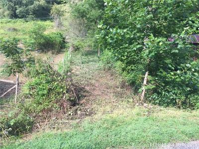Avery County, Watauga County Residential Lots & Land For Sale: 1395 Isaacs Branch