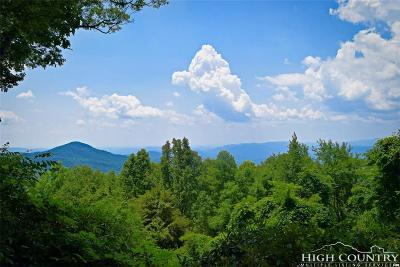 Burke County, Caldwell County, Watauga County, Avery County, Ashe County Residential Lots & Land For Sale: 663 Dogwood Lane
