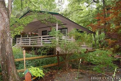 Caldwell County, Alexander County, Watauga County, Ashe County, Avery County, Burke County Single Family Home For Sale: 41 Valley Lane