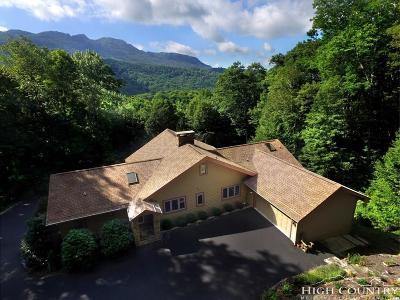 Banner Elk Single Family Home For Sale: 339 Letterfern Drive