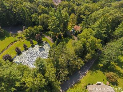 Watauga County Single Family Home For Sale: 313 Edith Lane