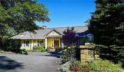 Banner Elk Single Family Home For Sale: 167 Chestnut Trl Road
