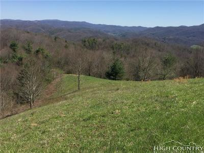 Avery County, Watauga County Residential Lots & Land For Sale: Tbd Raven Rock Farm Rd. Drive