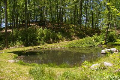 Watauga County Residential Lots & Land For Sale: Tbd Big View Trail, Lupine Lane, Ashberry Lane