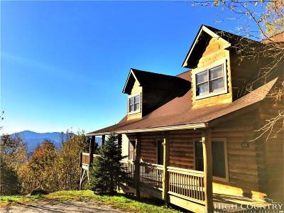 Avery County Single Family Home For Sale: 65 Lazy Lane