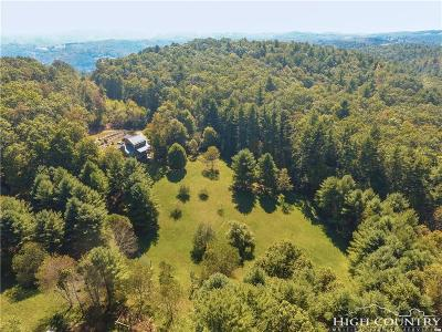 Ashe County Single Family Home For Sale: 2387 Big Flatts Church Road