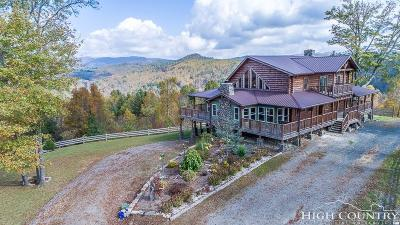 Ashe County Single Family Home For Sale: 5939 Big Laurel Road