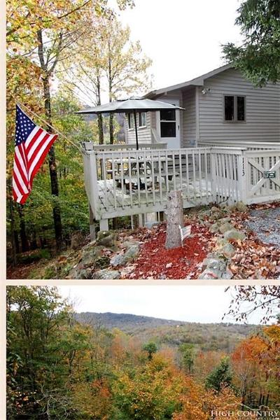 Watauga County Single Family Home For Sale: 113 Heather Lane