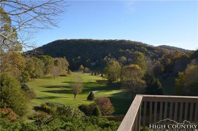 Avery County Single Family Home For Sale: 625 Mountain Glen Drive