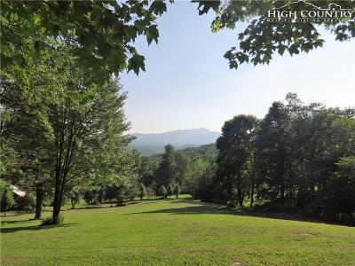 Watauga County Single Family Home For Sale: 3914/3916 Shulls Mill Road