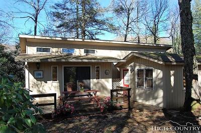 Alexander County, Caldwell County, Ashe County, Avery County, Watauga County, Burke County Single Family Home For Sale: 50 Yew Loop