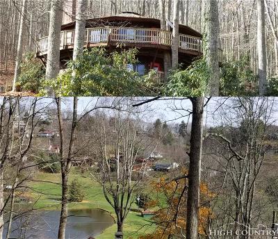 Mountain Glen Single Family Home For Sale: 859 Hemlock Drive