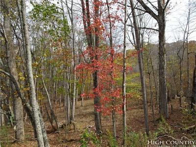 Ashe County Residential Lots & Land For Sale: Tbd Parker Eller Road